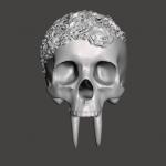 Skull form pic 1