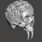 Skull form pic 3