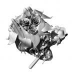 rose skull 2