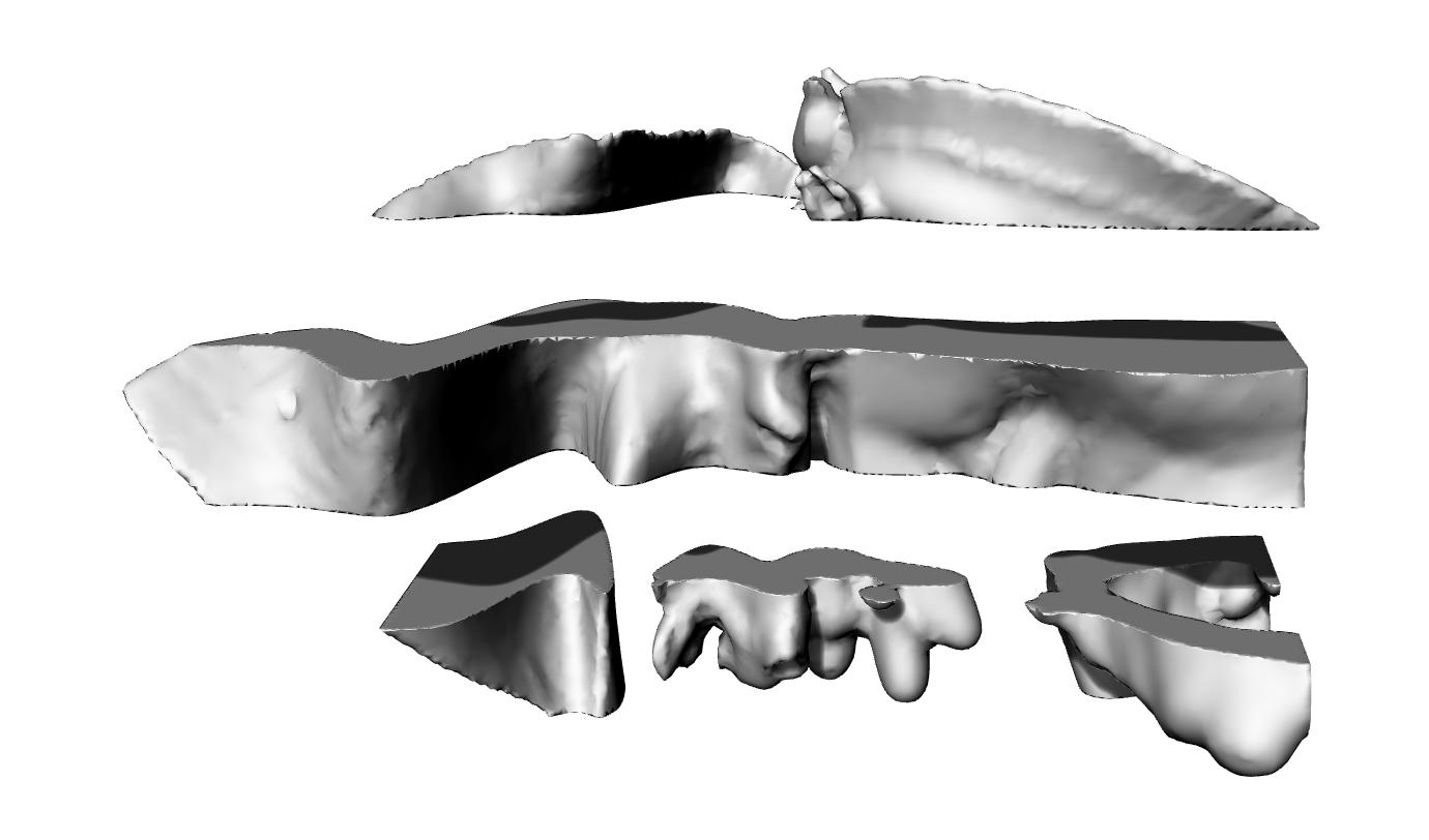 reference slice 4
