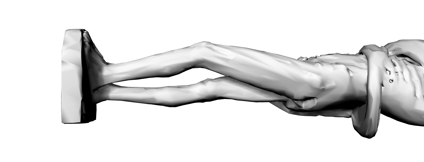 Sculpting Reference 6