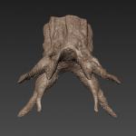 stump 5