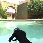 Pool Back
